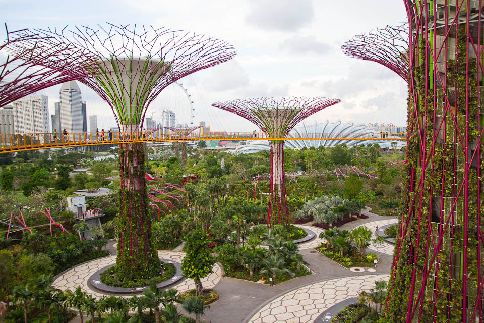 Parque árboles fantasia