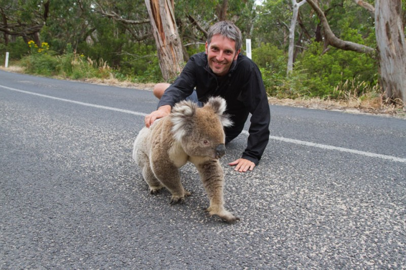 David posando con Koala