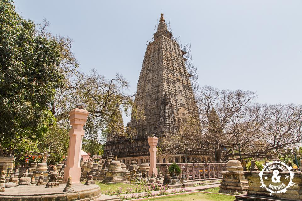 Templo con el arbol
