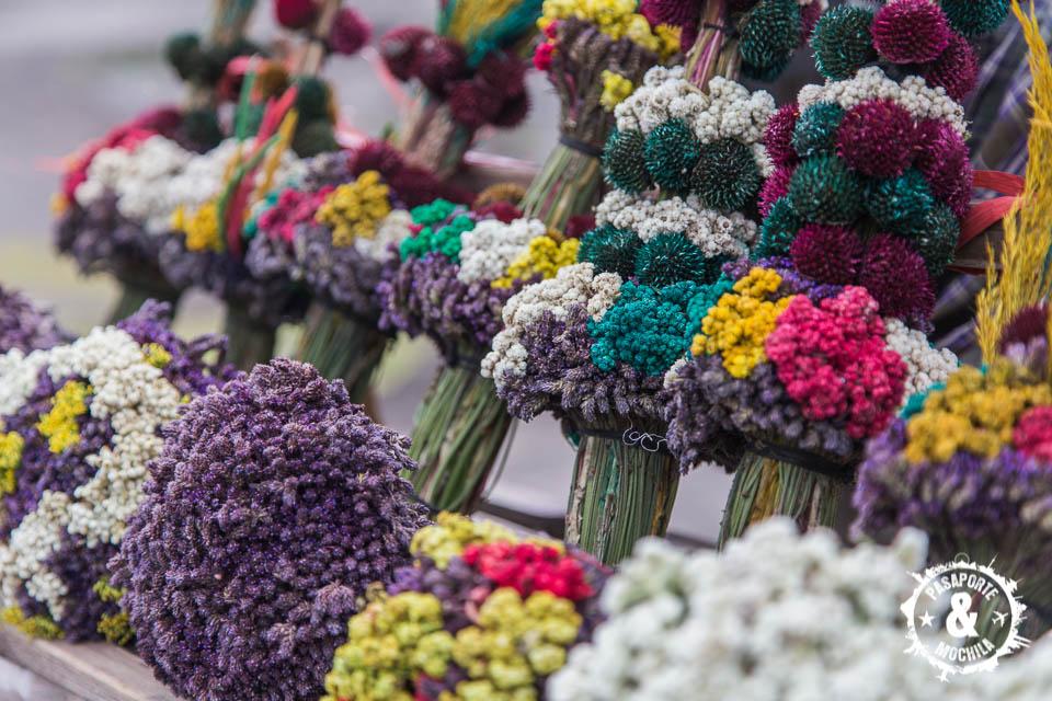 Flores para ofrenda.